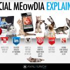 Social_Media_Explained4