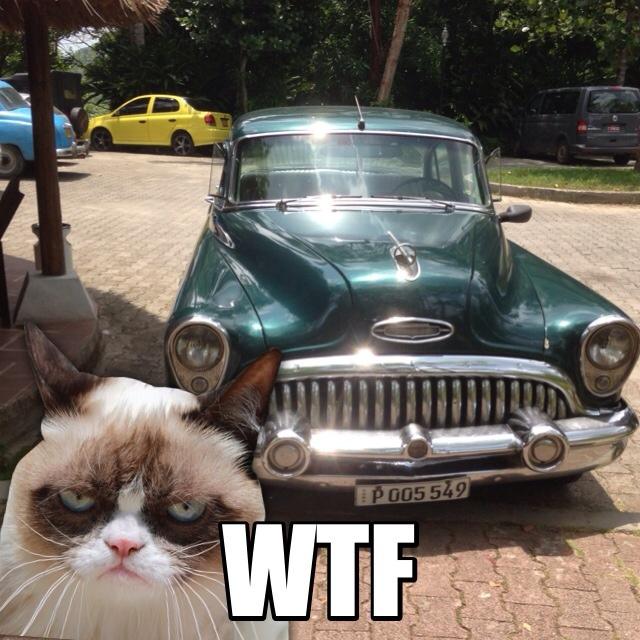 grumpy-car