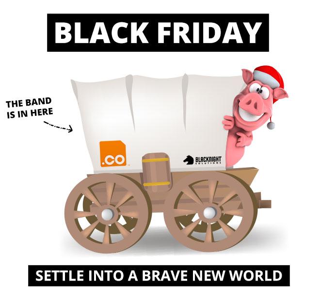 Blacknight's BlackFriday Bandwagon: Free .CO domains!