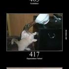 cats-explain-codes