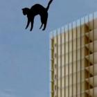 catfall